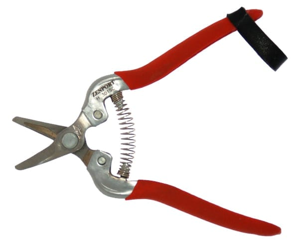 Short Stainless Harvest Shear